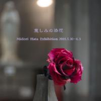 秦碧の「慈しみの染花」出版記念展-写真展示 千代田路子―