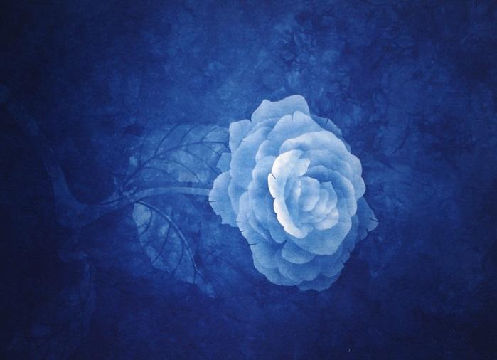 大田耕治藍染展-Modern Japan Blue-